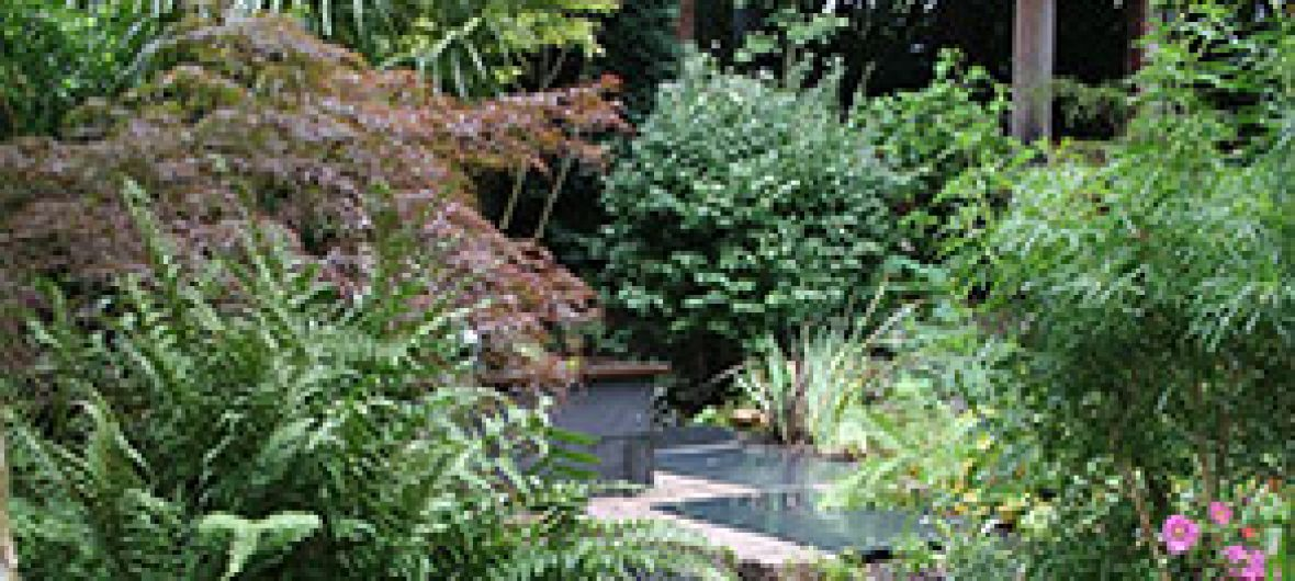 sourcing-plants